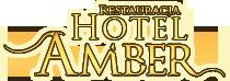 HOTEL AMBER - hotel blisko lotniska