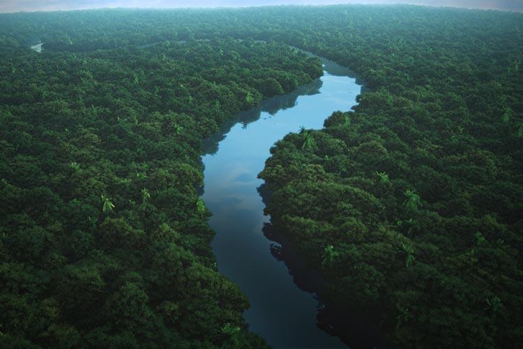 Амазония и река Амазонка